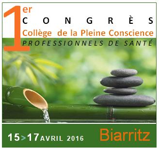logocongres-pleine-conscience-2016